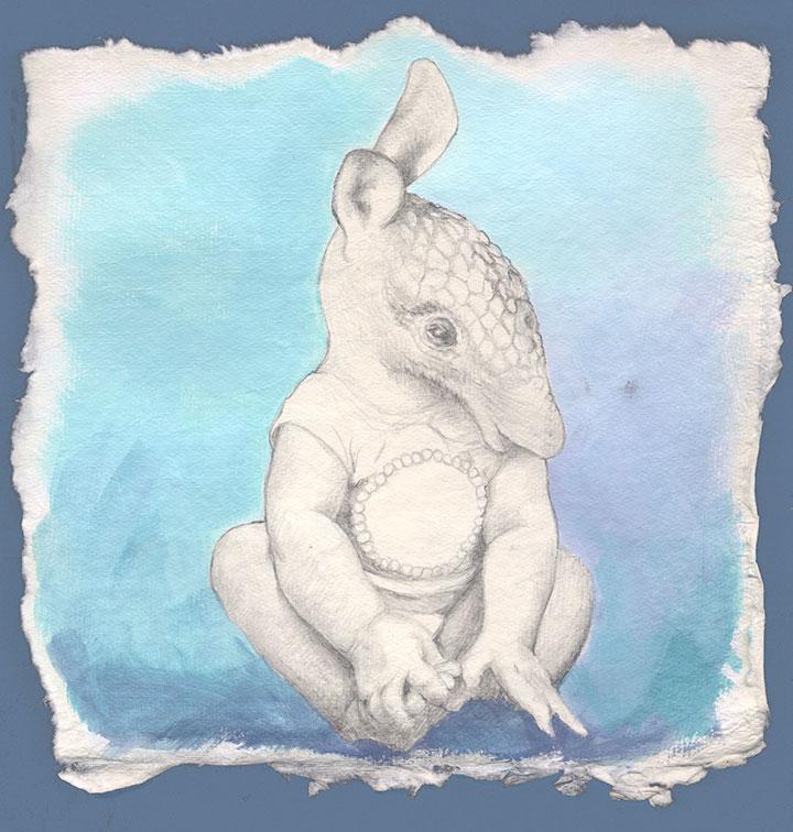 Baby Armadillo drawing