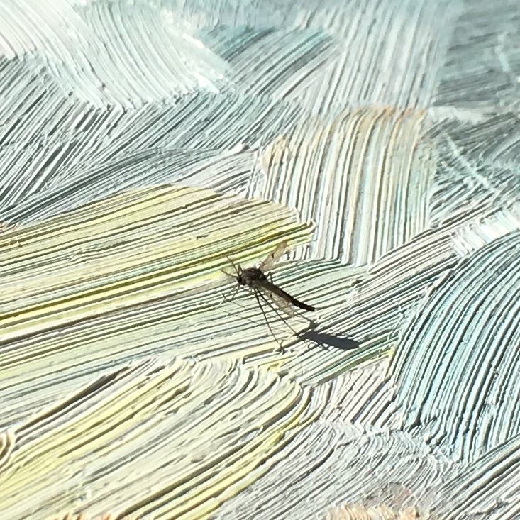 mosquito in oil paint
